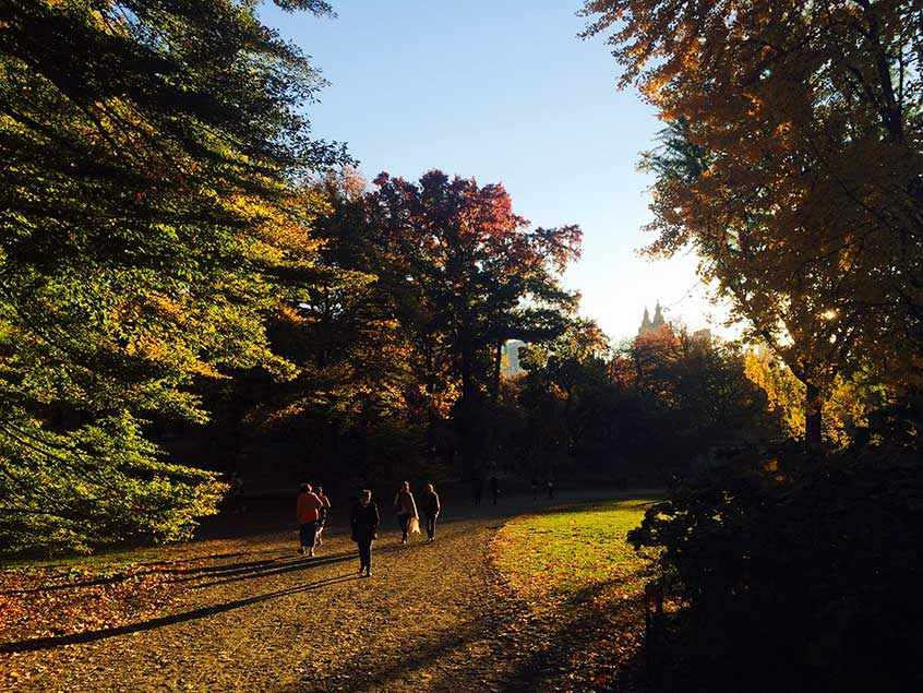 Fall-Central-Park