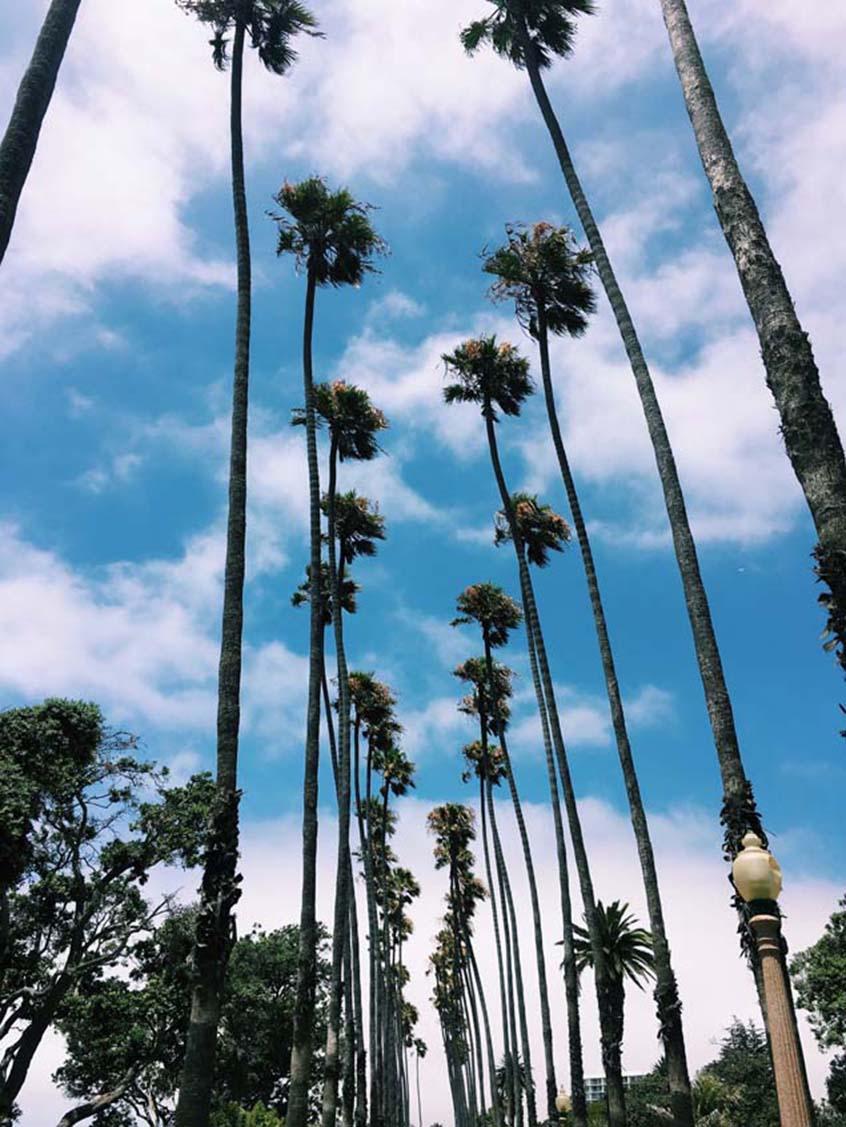 Los Angeles Entre Copines