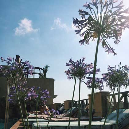 terrasse-barcelone-cotton-house-piscine-2