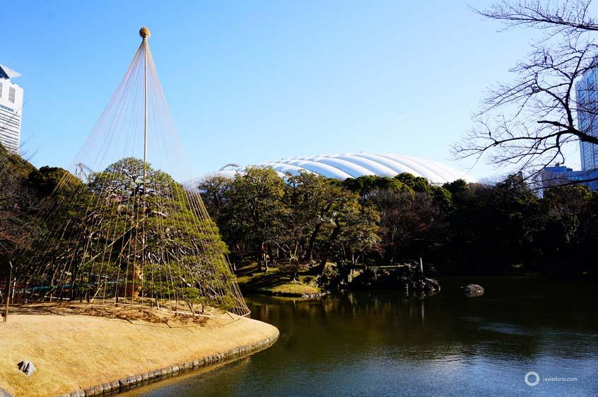 koishikawa-korakuen-garden-tokyo-3