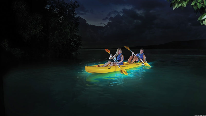 puerto-rico-entre-copines-Bioluminescent