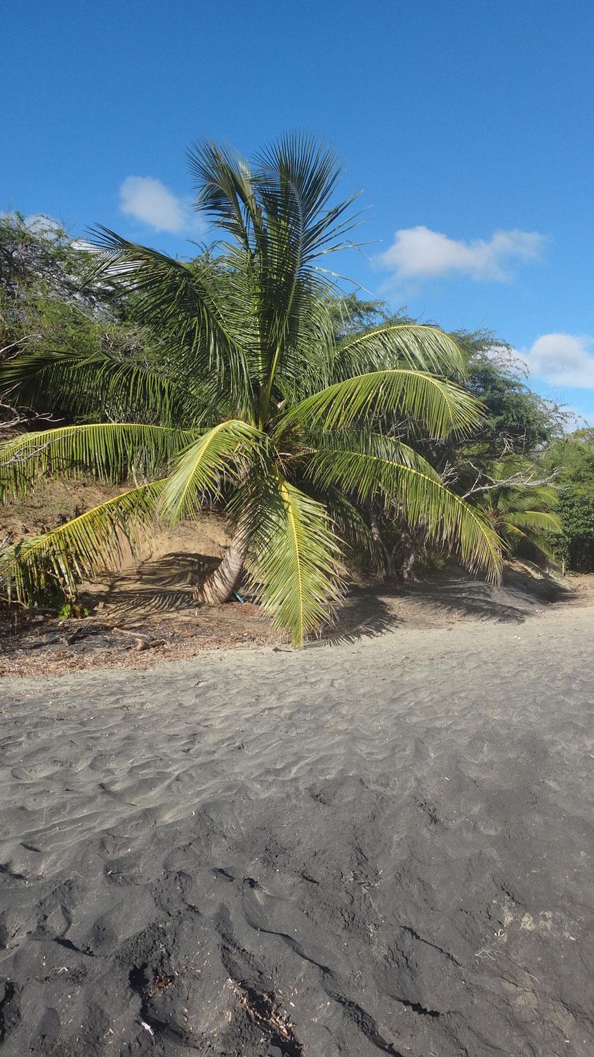 puerto-rico-entre-copines-black-sand-playa