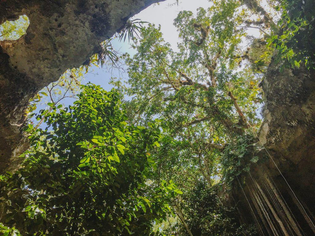 plus-beaux-cenotes-yucatan-sac-aua-1