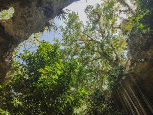 meilleurs-cenotes-yucatan-sac-aua-1