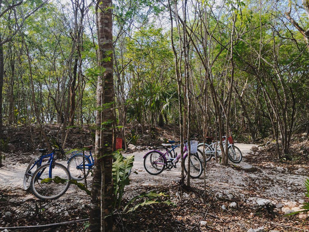 plus-beaux-cenotes-yucatan-xcanche-1
